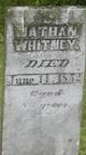 Nathan Whitney