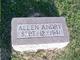 Profile photo:  Allen Andry