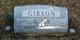 Albert J. Gibson