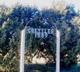 Greisler Cemetery