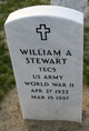 William A Stewart