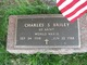 Charles S. Briley