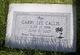 Garry Lee Callis