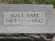 Profile photo:  Alice Lorin Dare