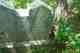 Anna Lou <I>Green</I> Bruner