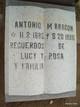 Antonio M Aragon