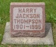 Harry Jackson Thompson