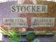 William Henry Stocker