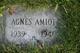 Profile photo:  Agnes Esther Amiot