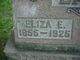 Profile photo:  Eliza Ellen <I>Chandler</I> Lake