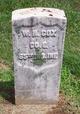 Pvt William Henry Cox