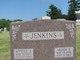Arden B. Jenkins