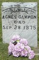Profile photo:  Agnes <I>Scarbrough</I> Gammon