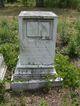 James Carter Longstreet Sr.