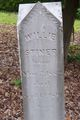 """William Henry """"Willie"""" Stiner"""