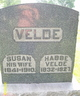 Profile photo:  Habbe Velde