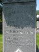 Almira <I>Nellis</I> Baldwin