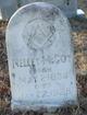 Neeley McCoy
