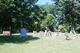 Cumins Cemetery