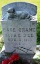 Infant Crane