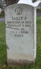 Sally P Diehl