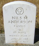 Nils Maynard Anderson