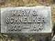Mary Gesina <I>Lupken</I> Schnelker