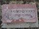 Raymond Bernard Voors