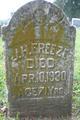 J H Freeze