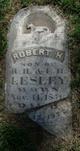 Robert H. Lesley