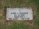 Albin A Walczak