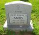 "Louis Francis ""Jr"" Ambs, Jr"