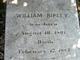 William Ripley