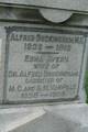 Dr Alfred Buckingham