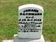 Johann Bachmann