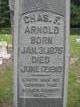 Charles F. Arnold