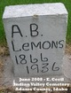 Profile photo:  A. B. Lemons