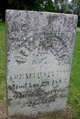 Eliza Ann Putnam