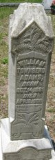 Profile photo:  William Townsend Adams