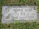 Homer Glen Ice