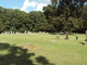 Big La Grue Cemetery