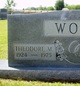 Theodore Martin Wolf