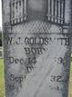 William James Goldsmith