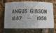 Profile photo:  Angus Gibson