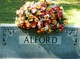 Profile photo: Mrs <I>Robertson</I> Alford