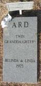 Profile photo:  Linda K Ard