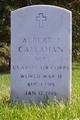Albert John Callahan