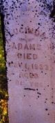 Lucinda <I>Witzel</I> Adams