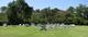 Davis-Murphy Cemetery