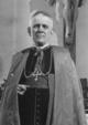 Cardinal Theodor Innitzer